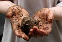 mud-throwing